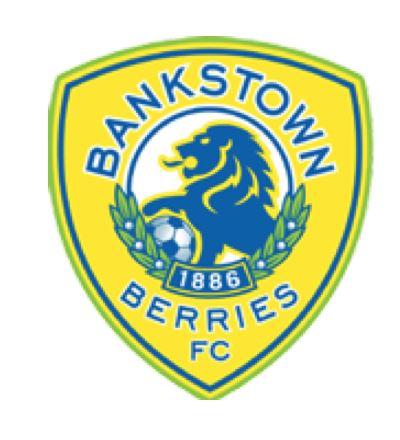 Bankstown Berries FC - Bankstown Berries FC - NPL2
