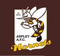 Aspley Hornets Football Club - Aspley Hornets