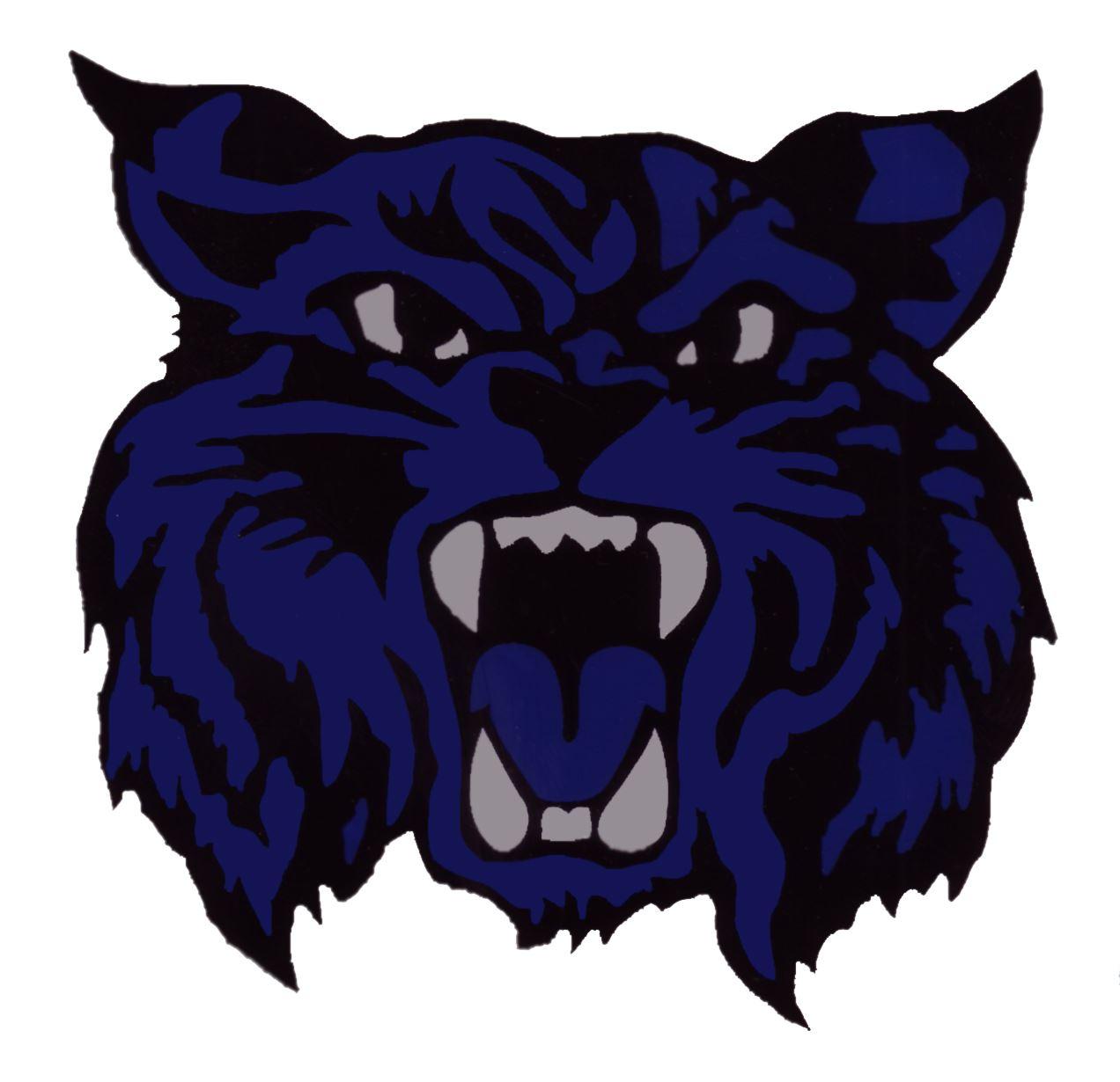 Fairfield - Fairfield Wildcats 4 Black