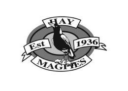 Hay - Hay