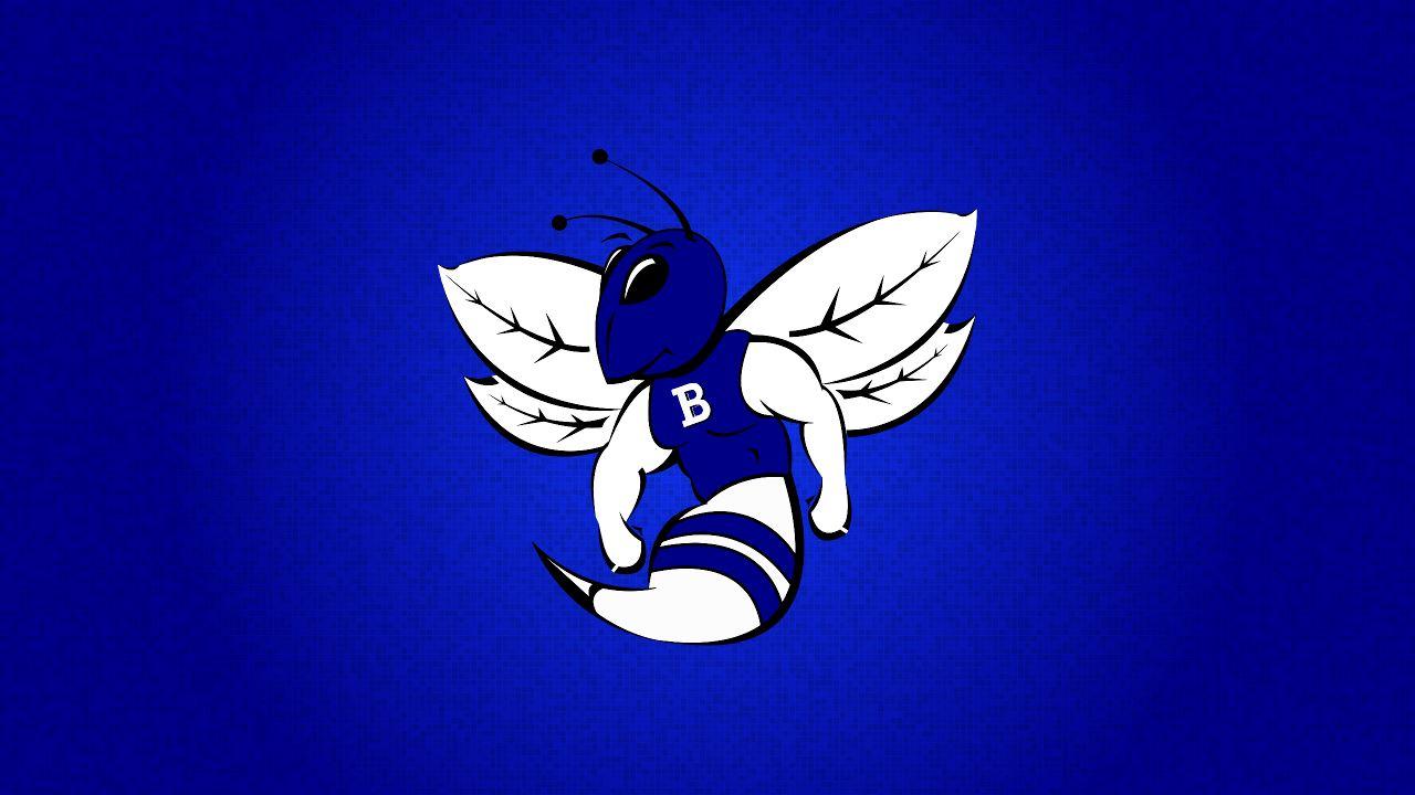 Bryant High School - Boys' Freshman Basketball