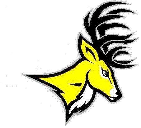 Central Bucks West High School - Bucks Varsity Football