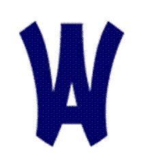 Wyomissing Area JSHS - Boys' Varsity Soccer