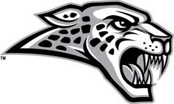 Ankeny Centennial High School - Sophomore Boys Basketball