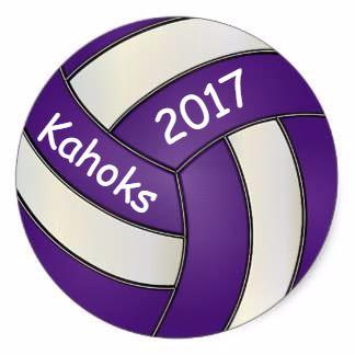 Collinsville High School - Girls' Varsity Volleyball