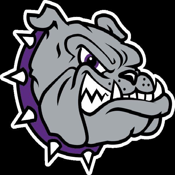 Brownsburg High School - Brownsburg Lady Bulldogs
