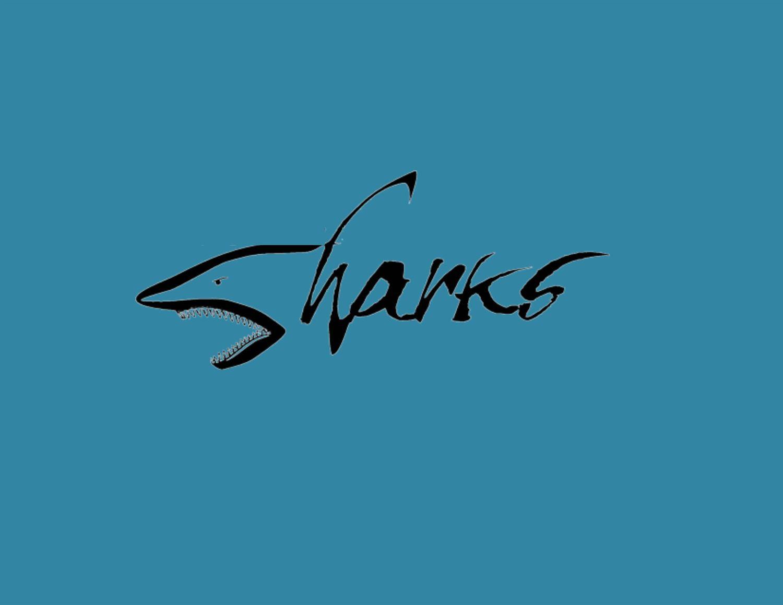 Surfside - Sharks