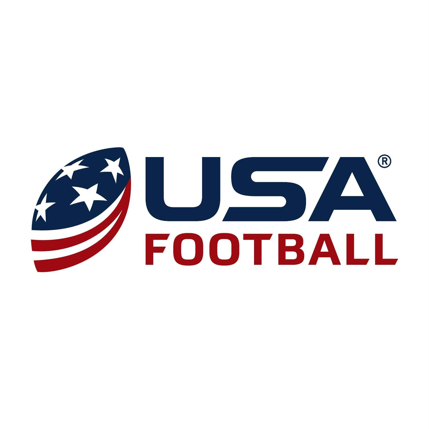 Image result for usa football
